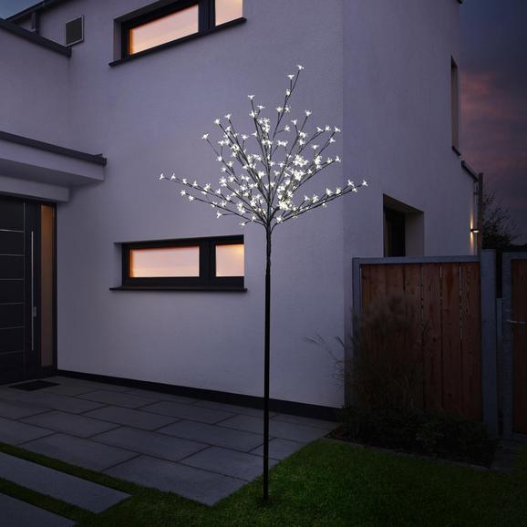 Dekobaum Joul mit 160 Kirschblüten - Leds H ca.167cm - Schwarz, KONVENTIONELL, Metall (167cm) - Mömax modern living