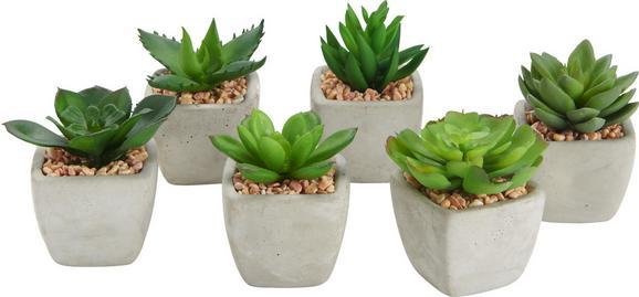 Kunstpflanze Mimi in verschiedenen Modellen - Grün, LIFESTYLE, Kunststoff (9/7cm)