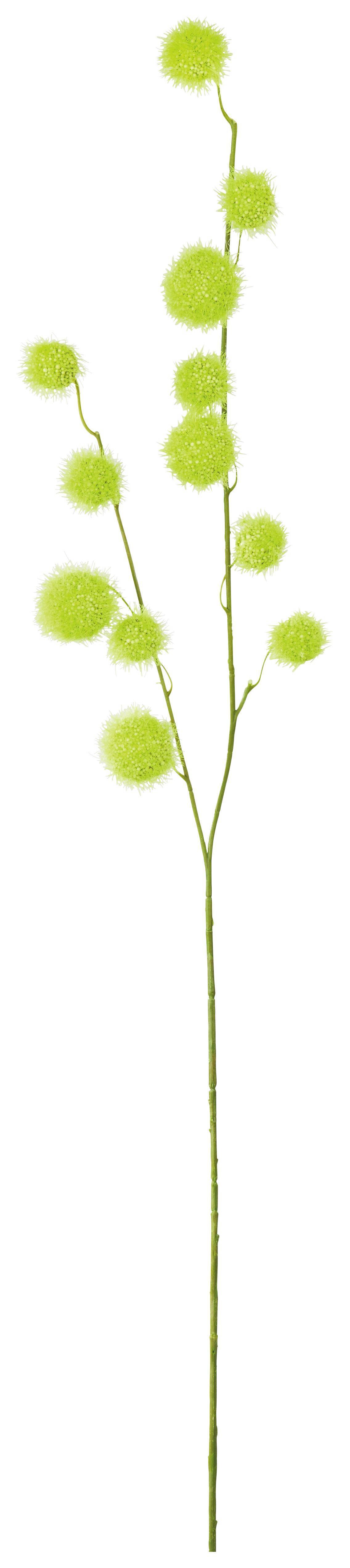 Dekorág Zöld - zöld, műanyag (105cm) - MÖMAX modern living