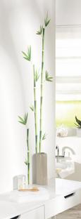 Dekorativne Nalepke Bambus - zelena, Moderno, umetna masa (50/70cm)