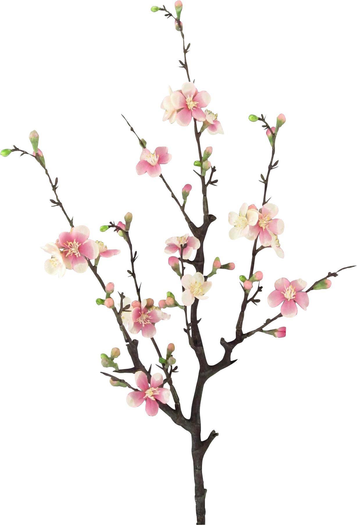 Dekozweig Quittenzweig Cherry in Rosa online kaufen ➤ mömax