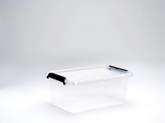 Doboz Tetővel Tina - áttetsző, műanyag (29/19,5/12cm) - MÖMAX modern living
