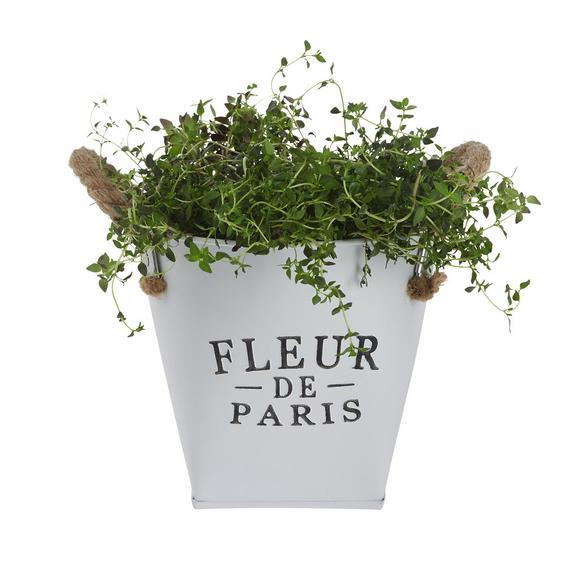 Übertopf Fleur De Paris in Weiß - Weiß, ROMANTIK / LANDHAUS, Metall (17cm)