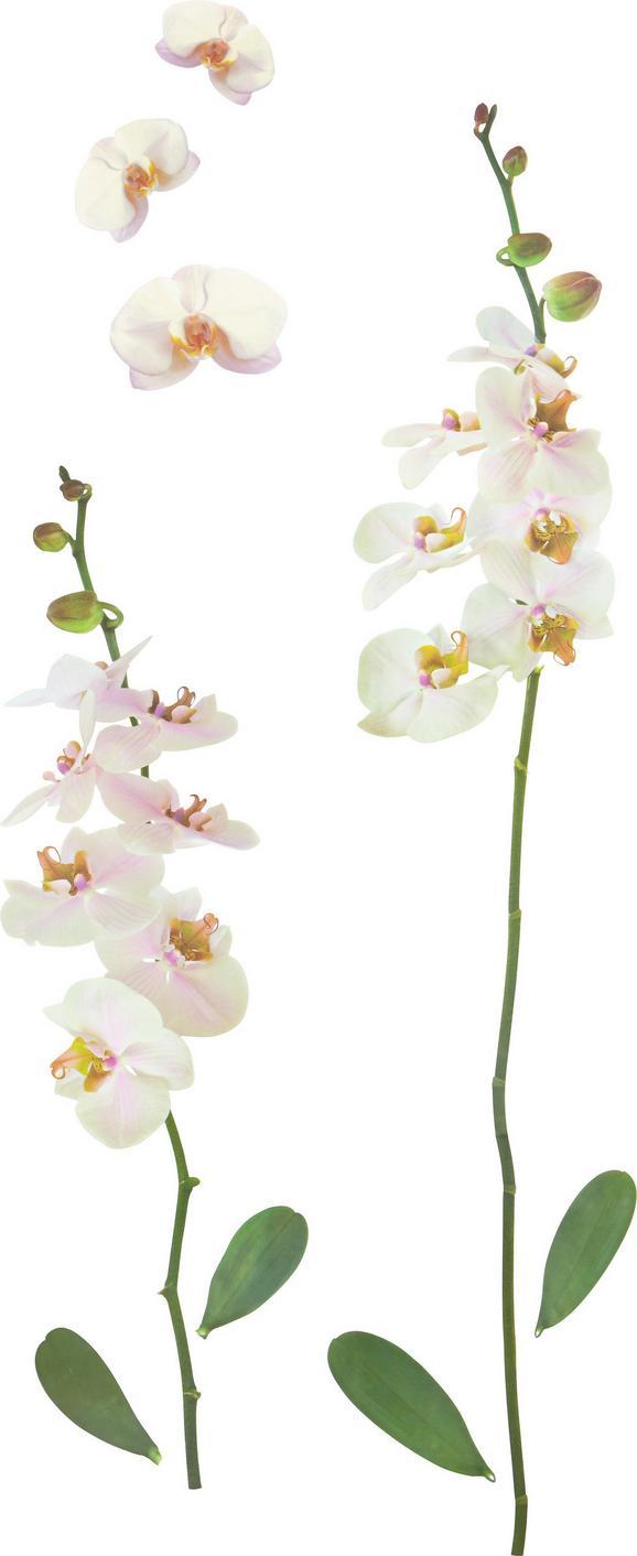 Dekosticker Orchidee in Weiß - Multicolor, Kunststoff (50/70cm) - Mömax modern living
