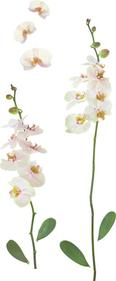 Dekosticker Orchidee in Weiß - Multicolor, Kunststoff (50/70cm)