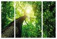 Slika Na Platnu Marius - zelena/rjava, leseni material/tekstil (116/80/1.8cm)