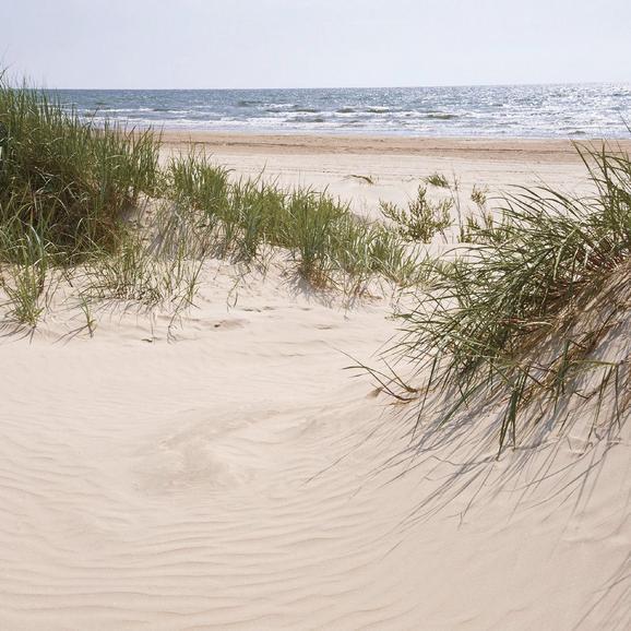 Üvegkép Leaving Into A Sand Dune - multicolor, modern, üveg (20/20/1,70cm) - MÖMAX modern living