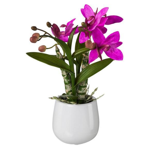Kunstblume Japanorchidee Pink/Grün - Pink/Grün, Basics, Kunststoff (32cm)