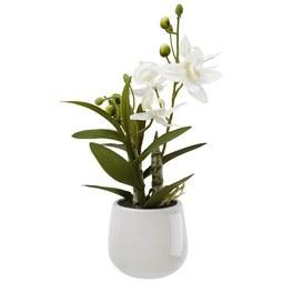 Kunstblume Japanorchidee ca. 32cm - Weiß/Grün, Basics, Kunststoff (32cm)