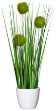 Šop Trave Jimmy - zelena, Konvencionalno, umetna masa (37cm)