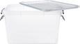 Box mit Deckel Sigfried Transparent - Transparent, Kunststoff (46/36/24cm)