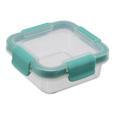Frischhaltedose Linnea Mint/transparent - Transparent/Mintgrün, MODERN, Kunststoff (10,9/10,9/4,3cm)