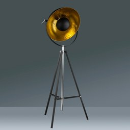 Stoječa Svetilka Jule - črna/zlata, Trendi, kovina (78/180cm) - Mömax modern living