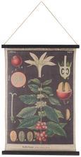 Wanddeko Flowers in Bunt - Multicolor, LIFESTYLE, Holz/Textil (64/82/1,8cm) - Mömax modern living