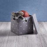 Aufbewahrungsboxen-Set 2-er Set mit Deckel - Weiß/Grau, MODERN, Kunststoff (30/30/30cm) - Mömax modern living