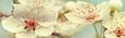 Keilrahmenbild Marcus, ca.150x50x3,8cm - Multicolor, MODERN, Holzwerkstoff/Textil (150/50/3.8cm) - Mömax modern living
