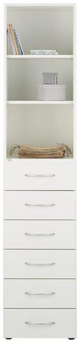 Mehrzweckschrank in Weiß - Alufarben/Weiß, Holzwerkstoff/Kunststoff (40/185/40cm) - Mömax modern living