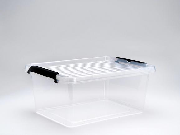 Doboz Tetővel Tina - Áttetsző, Műanyag (38,5/28,5/16,5cm) - Mömax modern living