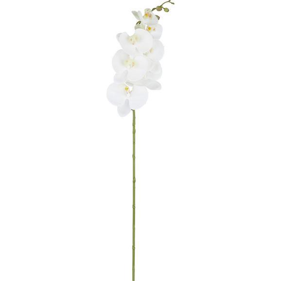 Orhideja Sissi - zelena/bela, kovina/umetna masa (87cm)