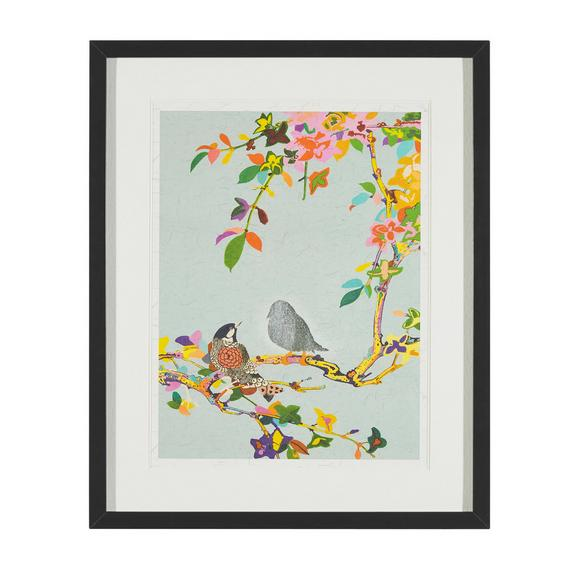 Bild Birdy II Multicolor ca.46X56X3CM - Multicolor/Schwarz, MODERN, Glas/Holz (46/56/3cm) - Bessagi Home