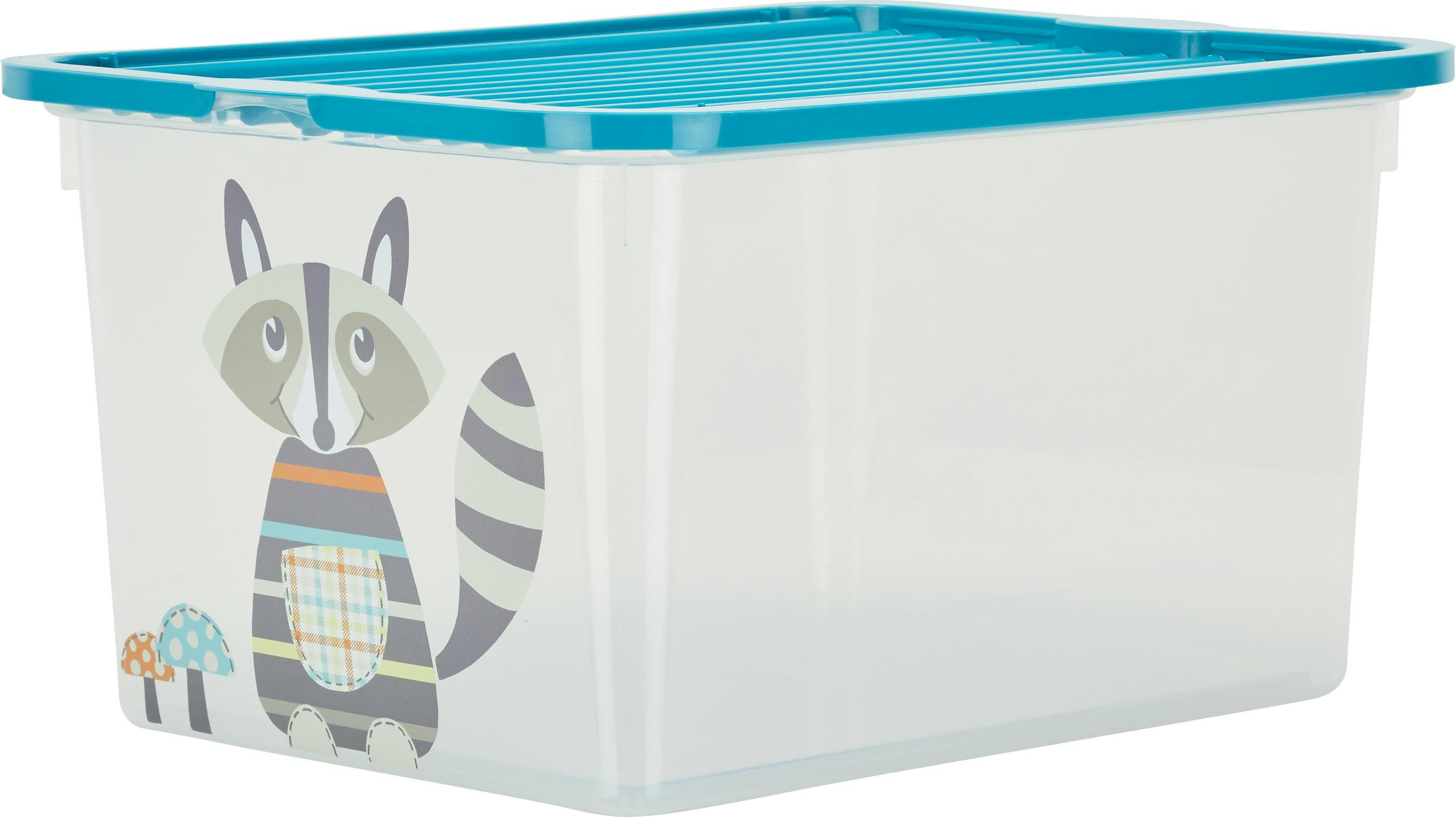 Box mit Deckel Andi aus Kunststoff - Türkis/Transparent, Kunststoff (37/27,6/20cm)