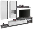 Dnevni Regal Iguan - aluminij/temno siva, Moderno, umetna masa/leseni material (260/191/42cm) - Mömax modern living