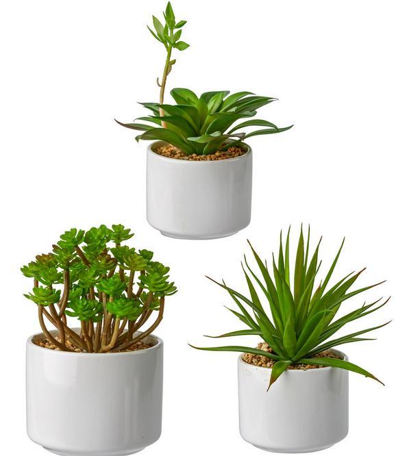 Kunstpflanze Helena Grün - Grün, Kunststoff (18cm) - Mömax modern living