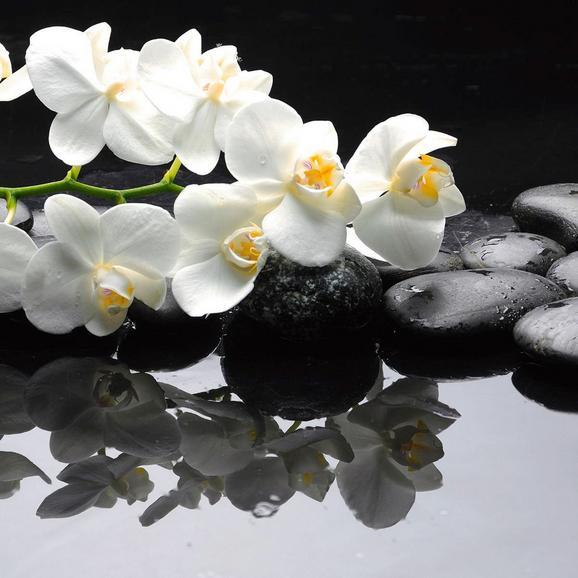 Glasbild Claming Orchid, ca. 30x30x2cm - Multicolor, MODERN, Glas (30/30/2cm) - MÖMAX modern living