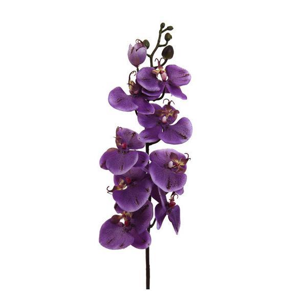 Orhideja Gundula - lila/zelena, umetna masa (98cm) - Mömax modern living