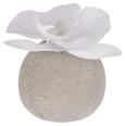 Orchidee Ines Weiß - Weiß, Kunststoff (9cm)