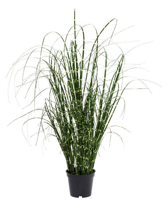 Kunstpflanze Vanessa Grün - Grün, ROMANTIK / LANDHAUS, Kunststoff (52cm)