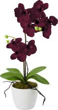 Kunstpflanze Marie in verschiedenen Farben - Pink/Lila, Kunststoff/Textil (11cm) - Mömax modern living