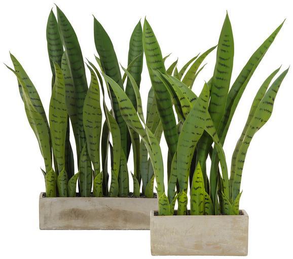 Kunstpflanze Vitus Grün - Grün, Kunststoff (58cm)