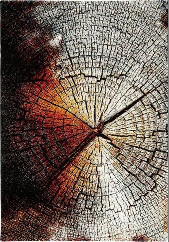 Webteppich Wood in Bunt, ca. 80x150cm - Multicolor, LIFESTYLE, Textil (80/150cm) - MÖMAX modern living
