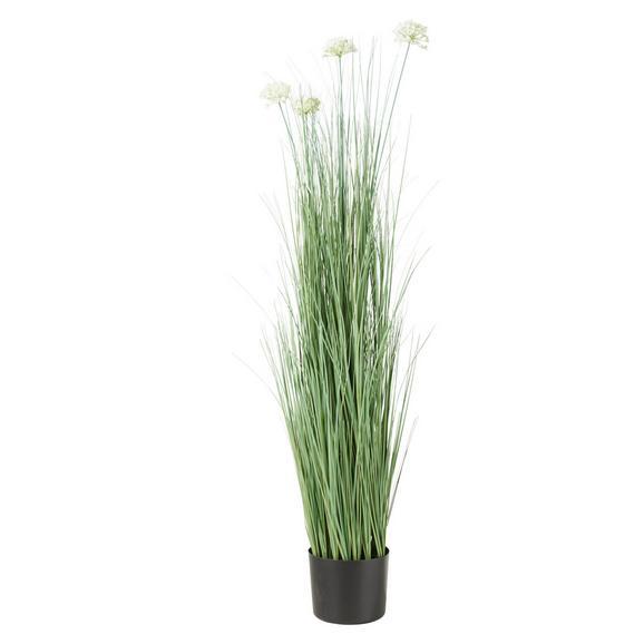 Umetna Rastlina Sina - lila/zelena, Konvencionalno, kovina/umetna masa (13,7/120cm) - Mömax modern living