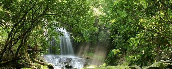 Glasbild Waterfall, 50x125x2cm - Multicolor, MODERN, Glas (50/125/2cm) - Mömax modern living