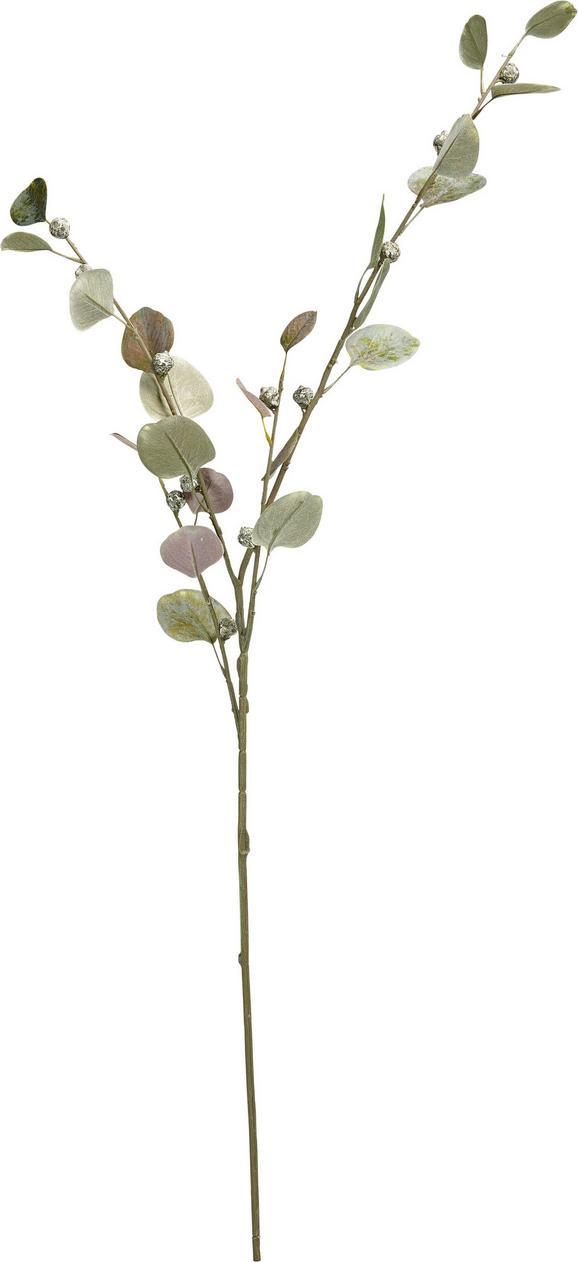 Okrasna Veja Eukalypthuszweig I - zelena/rjava, umetna masa (108 cmcm)