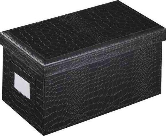 CD-/DVD-Box Magnolia in Schwarz - Schwarz, LIFESTYLE, Karton (25/14/13,2cm) - Mömax modern living