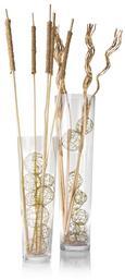 Vase Andrea aus Glas - Klar, MODERN, Glas (17/50cm) - Mömax modern living
