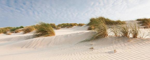 Glasbild Windy Sand, ca. 50x125x2cm - Multicolor, MODERN, Glas (50/125/2cm) - MÖMAX modern living