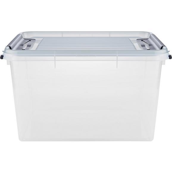 Box mit Deckel Sigfried Transparent - Transparent, Basics, Kunststoff (46/36/24cm)
