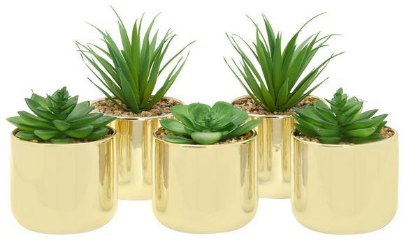 Kunstpflanze Sukkulente Versch. Designs - Goldfarben/Grün, Natur, Kunststoff (10/15cm)