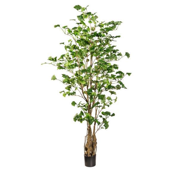 Kunstpflanze Ginkobaum I Grün - Braun/Grün, Kunststoff (155cm)