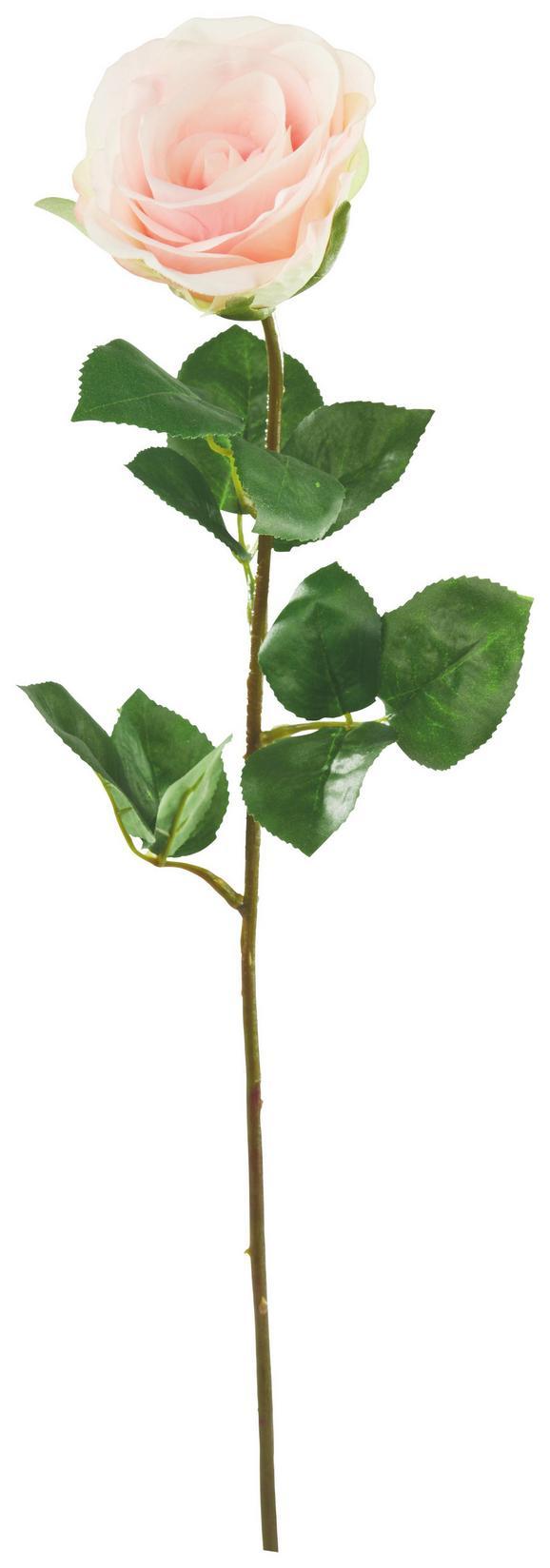 Művirág Rose - Rózsaszín/Zöld, Műanyag (69cm) - Mömax modern living