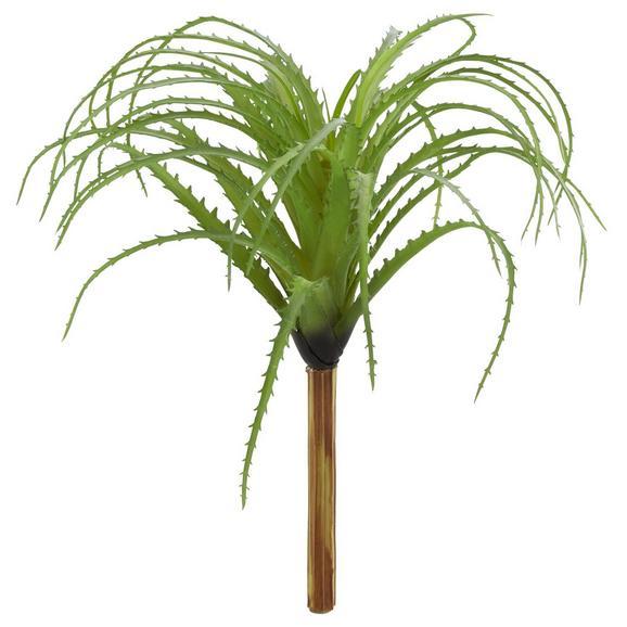 Kunstpflanze Tillandsie ca. 26cm - Grün, Basics, Kunststoff (26/26cm)