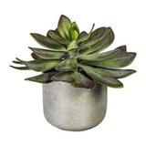 Kunstpflanze Echeveria Grün - Grau/Grün, Kunststoff (18/21cm)