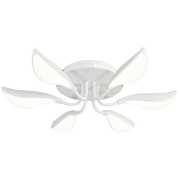 Plafonieră Cu Led Magnolia - Modern - Rabalux