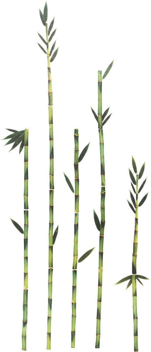 Dekosticker Bambus,50x70cm - Grün, MODERN, Kunststoff (50/70cm)