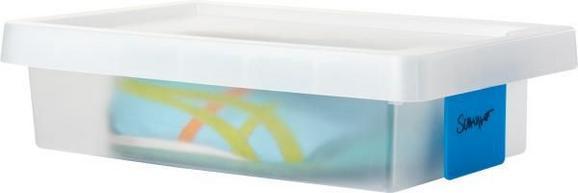 Box mit Deckel Mathias,  ca. 36x25x10cm - Transparent, KONVENTIONELL, Kunststoff (36.4/25.6/9.8cm) - Mömax modern living