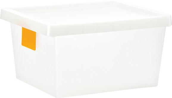 Škatla S Pokrovom Mathias - prosojna, Konvencionalno, umetna masa (41/33/22cm) - Mömax modern living